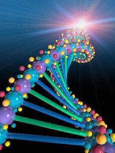 Genes En La Obesidad Endocrinologia Y Nutricion